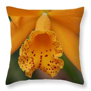The Orange Orchid Throw Pillow