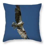 The Osprey Throw Pillow