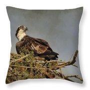 The Osprey Nest Throw Pillow