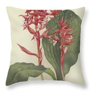 The Outstanding Stenorrhynchos  Throw Pillow