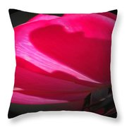 The Oval Rose Throw Pillow