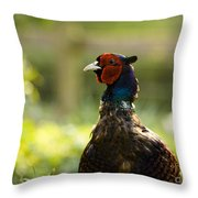 The Owner Of My Garden Throw Pillow