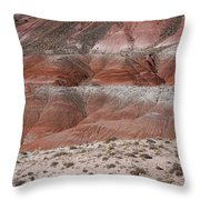 The Painted Desert  8020 Throw Pillow