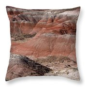The Painted Desert  8024 Throw Pillow