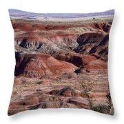 The Painted Desert  8062 Throw Pillow
