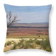 The Painted Desert Of Utah 1 Throw Pillow