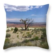 The Painted Desert Of Utah 2 Throw Pillow
