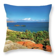 The Palm Forest Of Vai - Crete Throw Pillow