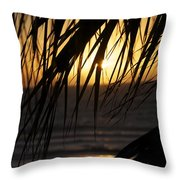 The Palm Tree In The Sunset Throw Pillow by Danielle Allard