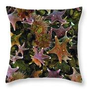 The Parade Of Stars Throw Pillow