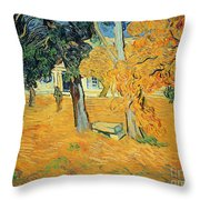 The Park At Saint Pauls Hospital Saint Remy Throw Pillow