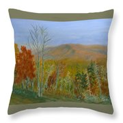 The Parkway View Throw Pillow
