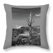 The Past Is Present Throw Pillow