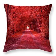 The Path 2 Throw Pillow