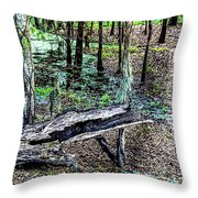 The Path By The Log Throw Pillow