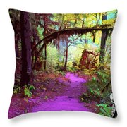 The Path Leads Ahead Throw Pillow