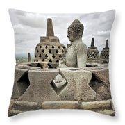The Path Of The Buddha #6 Throw Pillow