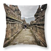 The Path Of The Buddha #7 Throw Pillow