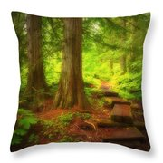 The Path Through The Forest Throw Pillow