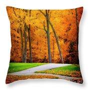 The Path To Autumn Throw Pillow