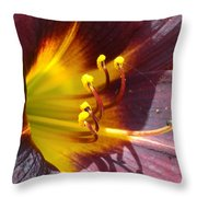 The Path To Divine Throw Pillow