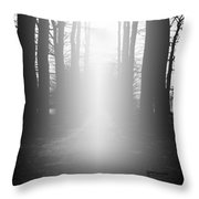 The Path To Heaven Throw Pillow