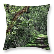 The Path We Walked Throw Pillow