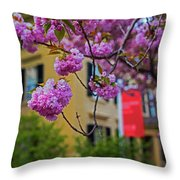 The Peabody Essex Museum At Spring Salem Ma Throw Pillow