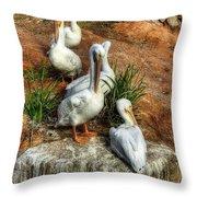 The Pelican Clan Throw Pillow