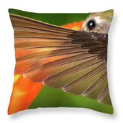 The Perfect Left Wing Of A Hummingbird Throw Pillow