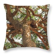 The Perfect Place Throw Pillow