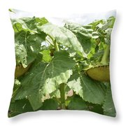 The Perfect Twin Throw Pillow