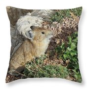 The Pica Throw Pillow