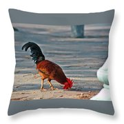 The Picking Rooster Throw Pillow