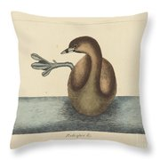 The Pied-billed Dobchick (colymbus Podiceps) Throw Pillow