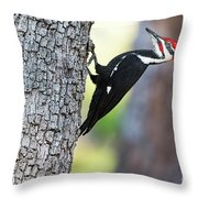 The Pileated Throw Pillow