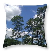 The Pines Of Jackson Heights Throw Pillow
