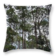 The Pines Of Tallahassee Throw Pillow
