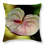 The Pink And Green Heart Throw Pillow