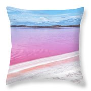 The Pink Diagonal Throw Pillow