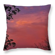 The Pink Sky Throw Pillow