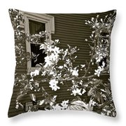 The Poetry Of Architecture 3 Throw Pillow
