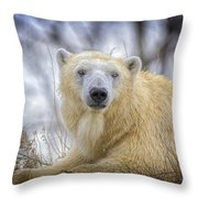 The Polar Bear Stare Throw Pillow