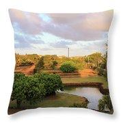 The Pond At Prince Kuhio Park Throw Pillow