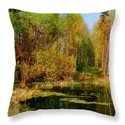 The Pond In The Spring Throw Pillow