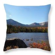 The Pond Throw Pillow