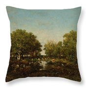 The Pool, Memory Of The Forest Of Chambord Throw Pillow