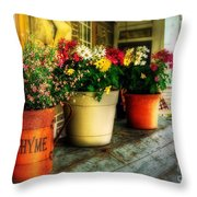 The Porch Swing Throw Pillow