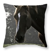 The Portrait Of The Horse Throw Pillow