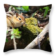 The Poser Throw Pillow by Rick Morgan